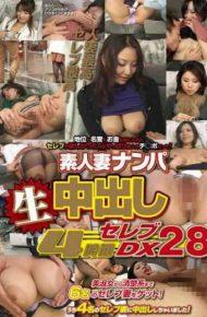 WA-204 4 Hours Dx 28 Celebrity Cum Amateur Wife Nampa