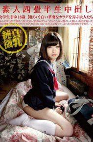 SY-178 Amateur Tatami Half Half Cream Piercing 178 Female Student Mayu 18 Years Old Junmaiko Milk Shameful Adults Playing White Delicate Bodhisattvas