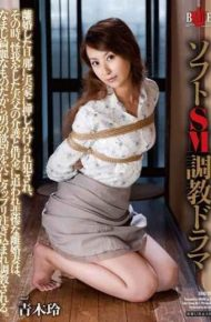 HBAD-290 And Fucked It Has Been Rushed To The Parents' House In The Soft Sm Torture Drama Divorced Husband At That Time Tragic Divorce His Wife Is Busy Nursing And Debt Zip In Which The Injury Is It Because It Was Something Rashly Clean Poured Plenty Of Man's Desire To Hole Torture . Aoki Rei