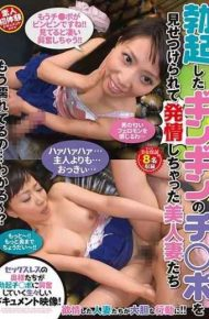 TDSU-133 Beautiful Wives Who Estranged After Showing Erect Gingin 's Chinpo