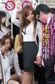 SSR-023 Beauty Ol Reverse Molester Train