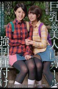 APNS-099 Big Breasts &amp Beautiful Mountains Girl Forced Typing Fukada Karin Hinata Mio