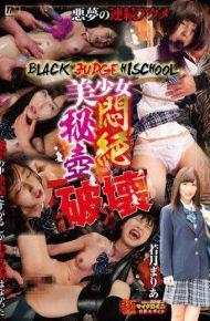 DXBB-013 BLACK JUDGE HISCHOOL Pretty Agony Hitsubo Destruction