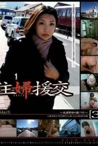 GS-168 Bytes To The Back Of The Dutiful Wife And Devoted Mother – Compensated Dating Housewife 3