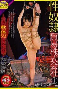 CETD-176 CETD-176 Taketo Tsugumi SEX Slave Trade