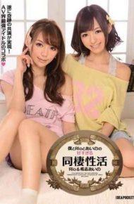 IPZ-127 Cohabitation Of Activity Rio Aino Kishi Is Too Sweet Of Aino And Rio And I