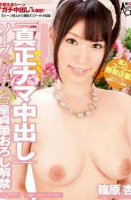 "SACE-103 ""cum Authenticity"" In The Soap Brush Wholesale Virgin Lifted Apricot Shinohara Gonzo"