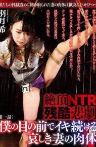 DBZC-002 DBZC-002 Hatsuki Nozomi Cum On NTR