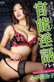 DJSK-069 DJSK-069 I'll Profanity Bukkake Functional Dirty Play Kobayakawa Reiko