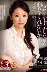SPRD-918 Do Not You Stop Because The Mother Was Moved To Tokyo … Kogiku Tsukishima
