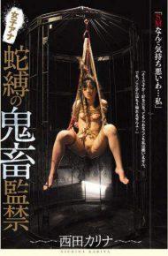 JBD-219 Female Anna Snake Bonded Demonic Animation Nishida Karina
