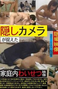 TUE-080 Hidden Cameras Caught In Household Naughty Picture