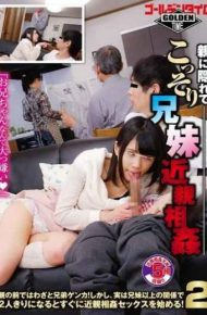 GDTM-044 Hiding In The Parent Secretly Siblings Incest!deliberately Siblings Fight In Front Of The Parent!however In Fact As Soon As It Is Alone With The Relationship Of More Than Siblings To Start Incest Sex!two