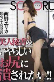 SSR-016 I Want To Be Crushed By Nasty Ass Of Beautiful Woman Secretary! ! Nishino Erika
