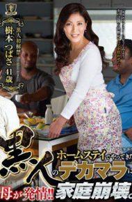 KUKU-002 Kuku-02 Mother Estrus In Black Dick That Has Been Doing In Homestay! !family Breakdown. Tsubasa Kimoto
