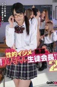 GAR-380 Mastermind Of Sexual Bullying Of Class Beauty Gal Student Council President Of Honor Student! ! 2.