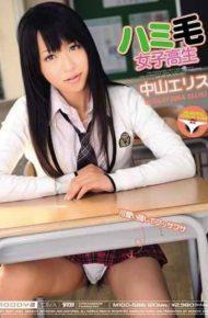 MIDD-588 Nakayama Ellis School Girls Hair Hami