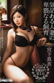 ABP-218 Noble Obscene Naru Breeding Miyashita Married Mai