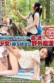 IENE-441 Outdoor Molester Shi Ambush Summer Homework A Girl Who Lost In The Popular Spot