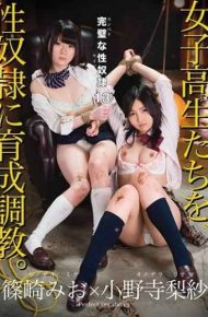 TKI-055 Perfect Sex Slave 13