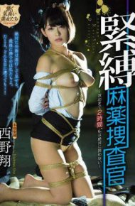 PRTD-008 PRTD-008 Nishino Shou Bondage Drug Agent
