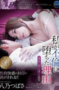 ANGR-001 Reason Why I Fell Into Adultery Lustful Desire That Reason Collapses Yatsuno Tsubasa