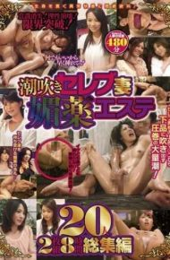 WA-285 Squirting Celebrity Wife Aphrodisiac Este 20 People 2 Disc 8 Hours Omnibus
