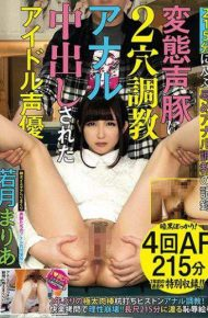 YAN-043 YAN-043 Idle Voice Has Been Issued Two-hole Torture In Anal Transformation Voice Pig Maria Wakatsuki