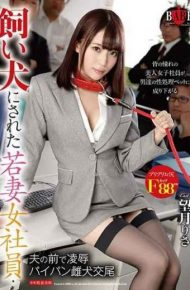 HBAD-465 Young Woman Female Employee Who Was Made A Domestic Dog – Insults In Front Of Her Husband Shaved Bitch Bitch Mizuki Mochizuki Risa