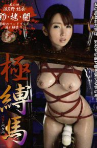 STM-030 Yui Hatano four-pole tied the horse