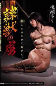 JBD-221 Yuri Momose The Captive Of The Animal Beast