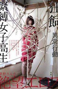 ZBES-034 ZBES-034 Yumeno Rinka Bonded Girls Student